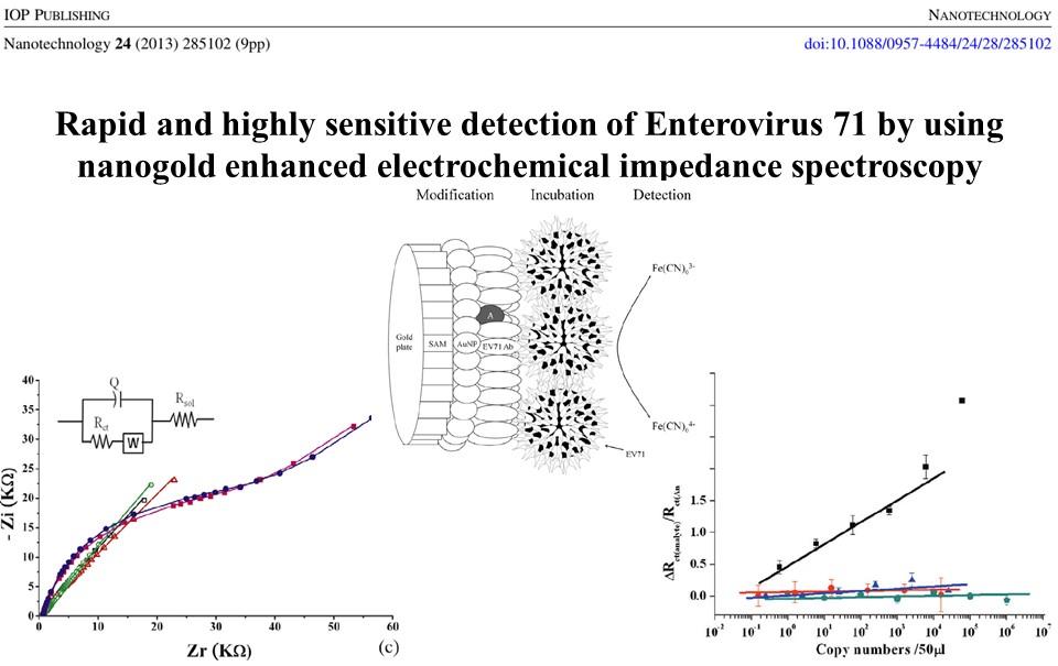 Single EV71 virus detection platform development